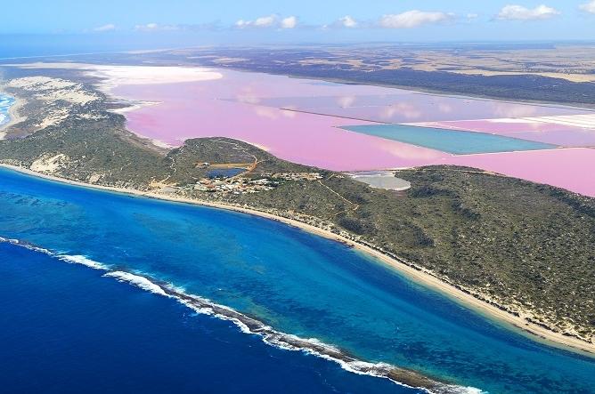 傑拉爾頓 - 粉紅湖